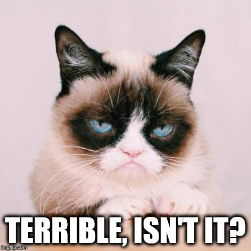 grumpy cat again | TERRIBLE, ISN'T IT? | image tagged in grumpy cat again | made w/ Imgflip meme maker