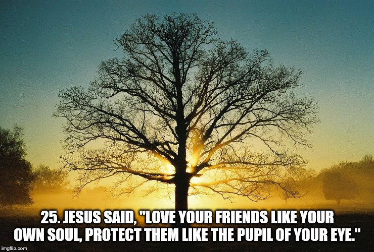 "25. JESUS SAID, ""LOVE YOUR FRIENDS LIKE YOUR OWN SOUL, PROTECT THEM LIKE THE PUPIL OF YOUR EYE."" 