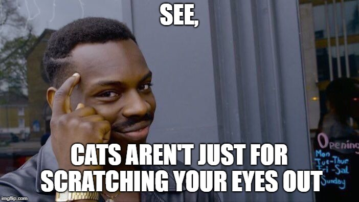 SEE, CATS AREN'T JUST FOR SCRATCHING YOUR EYES OUT | image tagged in memes,roll safe think about it | made w/ Imgflip meme maker