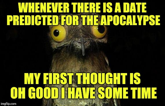 Weird Stuff I Do Potoo Meme | WHENEVER THERE IS A DATE PREDICTED FOR THE APOCALYPSE MY FIRST THOUGHT IS OH GOOD I HAVE SOME TIME | image tagged in memes,weird stuff i do potoo | made w/ Imgflip meme maker