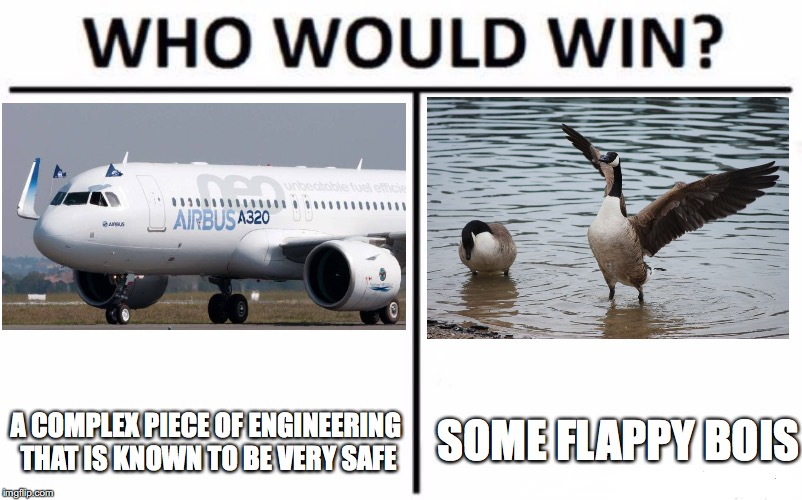 Who Would Win? | A COMPLEX PIECE OF ENGINEERING THAT IS KNOWN TO BE VERY SAFE SOME FLAPPY BOIS | image tagged in memes,who would win,airplane,geese | made w/ Imgflip meme maker