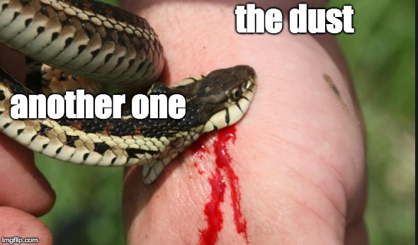 another one bites the dust | another one the dust | image tagged in another one,the dust,another one bites the dust,snek,snake,snakey boi | made w/ Imgflip meme maker