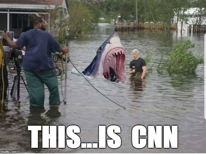 This...Is CNN | THIS...IS  CNN | image tagged in cnn,floods,north carolina,hurricane florence,fake news,shark attack | made w/ Imgflip meme maker