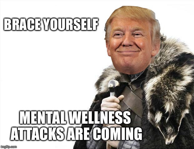 Panic in DC | BRACE YOURSELF MENTAL WELLNESS ATTACKS ARE COMING | image tagged in memes,brace yourselves x is coming,donald trump,trump,drain the swamp | made w/ Imgflip meme maker