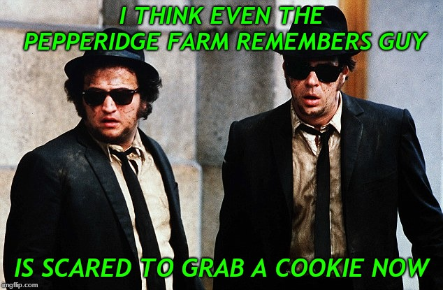 Blues Brothers wtf | I THINK EVEN THE PEPPERIDGE FARM REMEMBERS GUY IS SCARED TO GRAB A COOKIE NOW | image tagged in blues brothers wtf | made w/ Imgflip meme maker