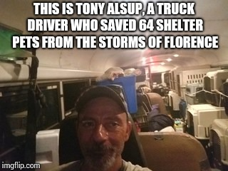 Tony used a school bus and his own time and money to save these pets | THIS IS TONY ALSUP, A TRUCK DRIVER WHO SAVED 64 SHELTER PETS FROM THE STORMS OF FLORENCE | image tagged in hurricane florence,truck driver,pets,cats,dogs,hero | made w/ Imgflip meme maker