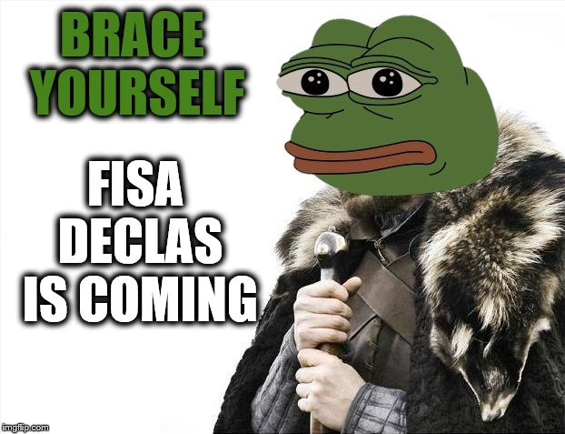 Game Over | BRACE YOURSELF FISA DECLAS IS COMING | image tagged in pepe brace yourself,pepe the frog,brace yourself,fisagate | made w/ Imgflip meme maker