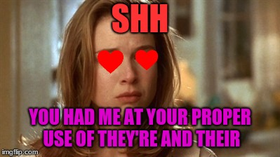 Jerry Maguire you had me at hello | SHH YOU HAD ME AT YOUR PROPER USE OF THEY'RE AND THEIR | image tagged in jerry maguire you had me at hello | made w/ Imgflip meme maker