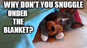 WHY DON'T YOU SNUGGLE UNDER THE BLANKET? | made w/ Imgflip meme maker