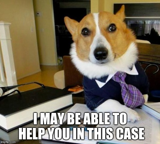 Lawyer Corgi Dog | I MAY BE ABLE TO HELP YOU IN THIS CASE | image tagged in lawyer corgi dog | made w/ Imgflip meme maker