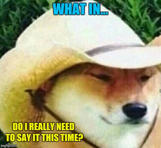 What in tarnation | WHAT IN... DO I REALLY NEED TO SAY IT THIS TIME? | image tagged in what in tarnation | made w/ Imgflip meme maker