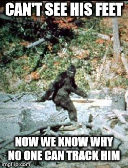 big foot | CAN'T SEE HIS FEET NOW WE KNOW WHY NO ONE CAN TRACK HIM | image tagged in big foot | made w/ Imgflip meme maker