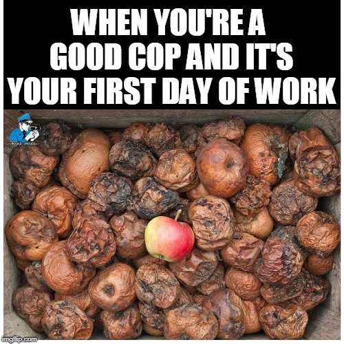 They're not all bad apples but... | WHEN YOU'RE A GOOD COP AND IT'S YOUR FIRST DAY OF WORK | image tagged in bad apple,cops,bad cop,good cop,apples,memes | made w/ Imgflip meme maker