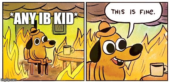 This is fine dog | *ANY IB KID* | image tagged in this is fine dog | made w/ Imgflip meme maker