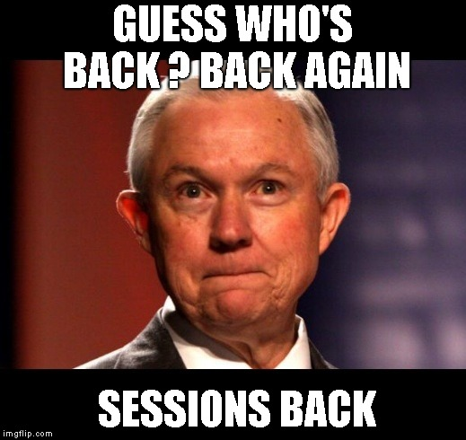 Jeff Sessions | GUESS WHO'S BACK ? BACK AGAIN SESSIONS BACK | image tagged in jeff sessions | made w/ Imgflip meme maker