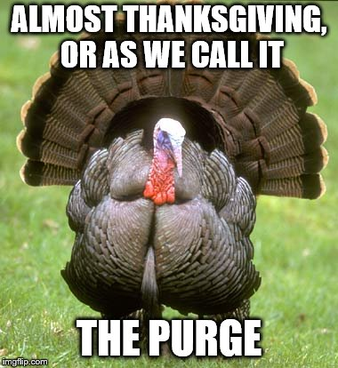 Turkey |  ALMOST THANKSGIVING, OR AS WE CALL IT; THE PURGE | image tagged in memes,turkey | made w/ Imgflip meme maker