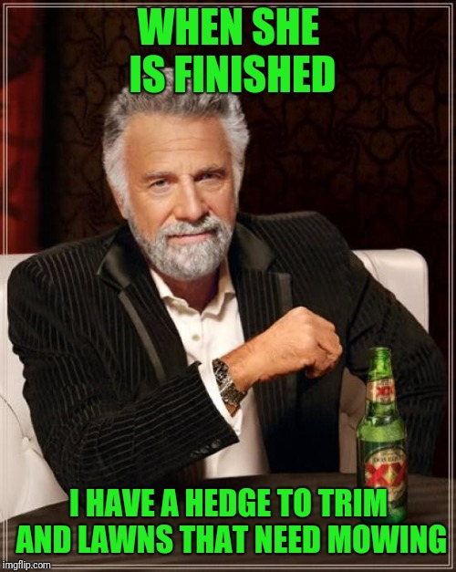 The Most Interesting Man In The World Meme | WHEN SHE IS FINISHED I HAVE A HEDGE TO TRIM AND LAWNS THAT NEED MOWING | image tagged in memes,the most interesting man in the world | made w/ Imgflip meme maker