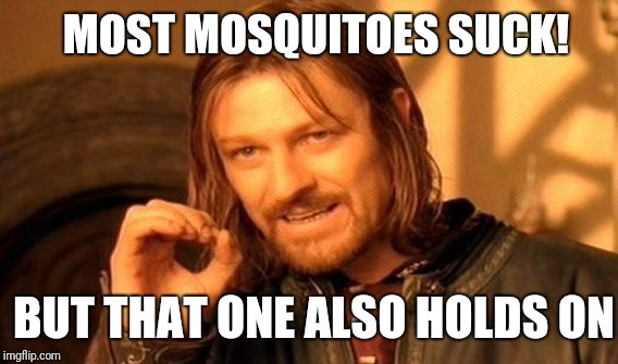One Does Not Simply Meme | MOST MOSQUITOES SUCK! BUT THAT ONE ALSO HOLDS ON | image tagged in memes,one does not simply | made w/ Imgflip meme maker