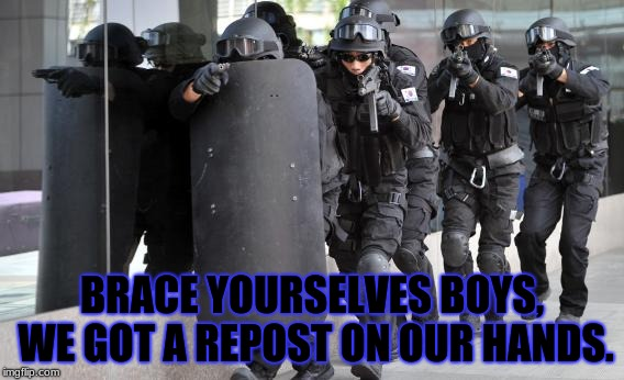 Dont move, you thief! | BRACE YOURSELVES BOYS, WE GOT A REPOST ON OUR HANDS. | image tagged in repost police,reposts | made w/ Imgflip meme maker