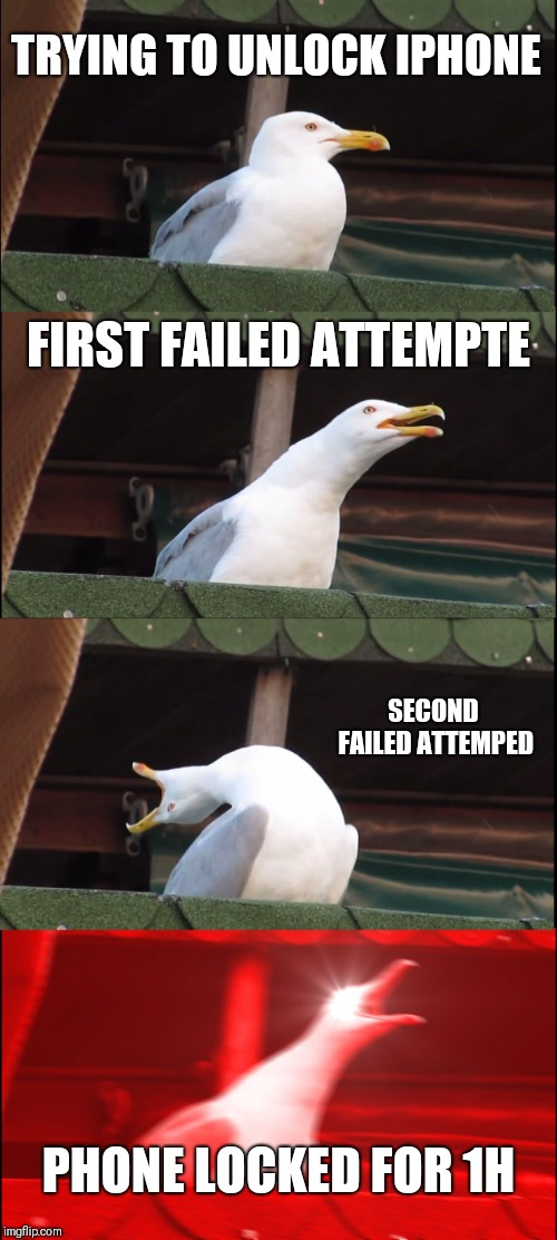 Inhaling Seagull Meme | TRYING TO UNLOCK IPHONE FIRST FAILED ATTEMPTE SECOND FAILED ATTEMPED PHONE LOCKED FOR 1H | image tagged in memes,inhaling seagull | made w/ Imgflip meme maker