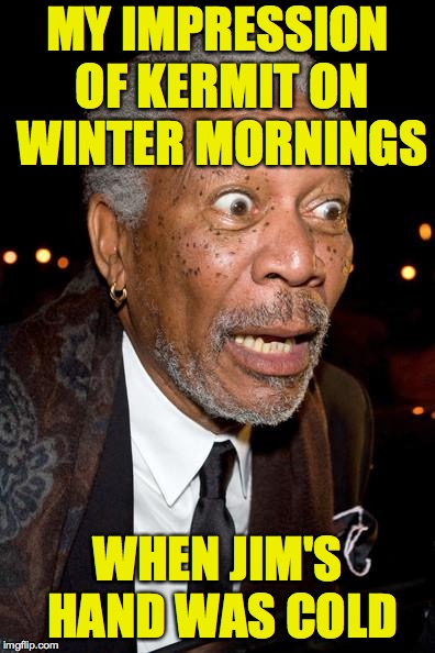 OMG! WTF? | MY IMPRESSION OF KERMIT ON WINTER MORNINGS WHEN JIM'S HAND WAS COLD | image tagged in omg wtf,kermit,jim henson,memes | made w/ Imgflip meme maker