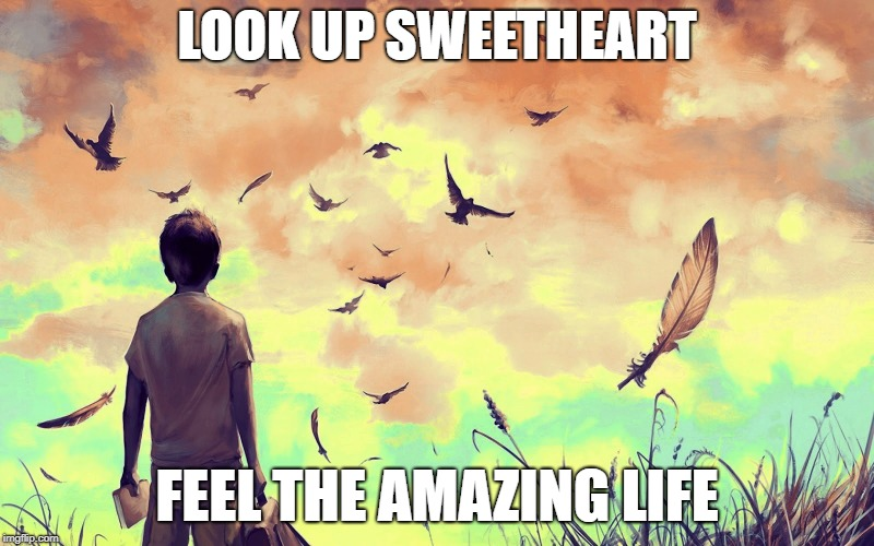 LOOK UP SWEETHEART FEEL THE AMAZING LIFE | image tagged in life,hope,love,happiness,faith | made w/ Imgflip meme maker