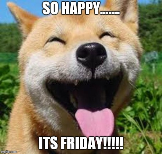 Happy Doge | SO HAPPY....... ITS FRIDAY!!!!! | image tagged in happy doge | made w/ Imgflip meme maker