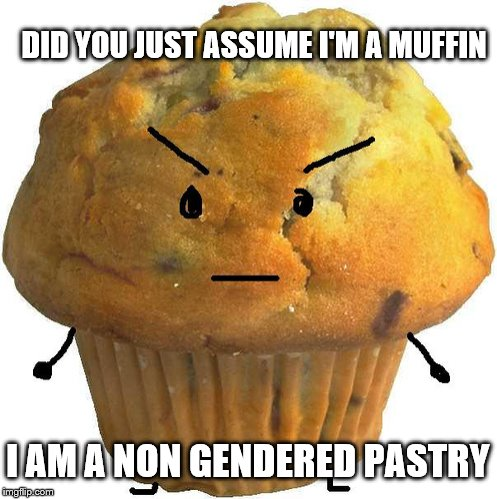 Everyone Is Just So Sensitive These Days | DID YOU JUST ASSUME I'M A MUFFIN I AM A NON GENDERED PASTRY | image tagged in muffins,triggered,memes | made w/ Imgflip meme maker