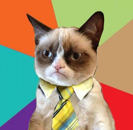 grumpy business cat blank template imgflip