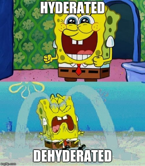 spongebob happy and sad | HYDERATED DEHYDERATED | image tagged in spongebob happy and sad | made w/ Imgflip meme maker