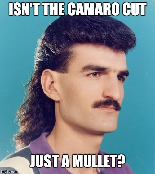 mullet  | ISN'T THE CAMARO CUT JUST A MULLET? | image tagged in mullet | made w/ Imgflip meme maker