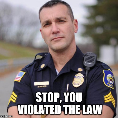Cop | STOP, YOU VIOLATED THE LAW | image tagged in cop | made w/ Imgflip meme maker