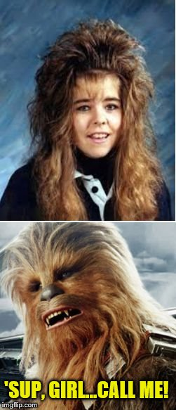 Bad hair is in the eye of the beholder | 'SUP, GIRL...CALL ME! | image tagged in bad hair day,chewbacca,wookie hair,star wars | made w/ Imgflip meme maker