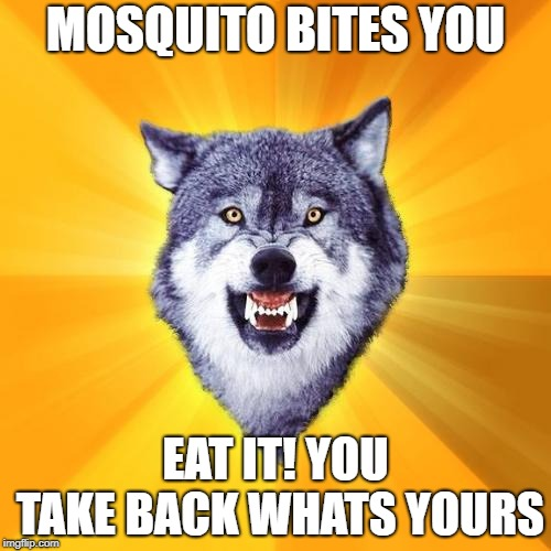 Courage Wolf | MOSQUITO BITES YOU EAT IT! YOU TAKE BACK WHATS YOURS | image tagged in memes,courage wolf | made w/ Imgflip meme maker