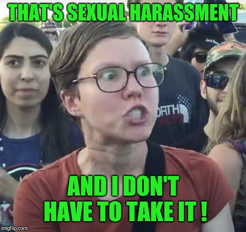 Triggered feminist | THAT'S SEXUAL HARASSMENT AND I DON'T HAVE TO TAKE IT ! | image tagged in triggered feminist | made w/ Imgflip meme maker