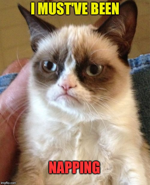 Grumpy Cat Meme | I MUST'VE BEEN NAPPING | image tagged in memes,grumpy cat | made w/ Imgflip meme maker