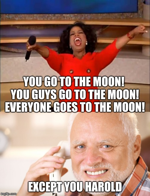 I heard about the Jap going to the moon with artists | YOU GO TO THE MOON! YOU GUYS GO TO THE MOON! EVERYONE GOES TO THE MOON! EXCEPT YOU HAROLD | image tagged in memes,oprah you get a,hide the pain harold,moon | made w/ Imgflip meme maker