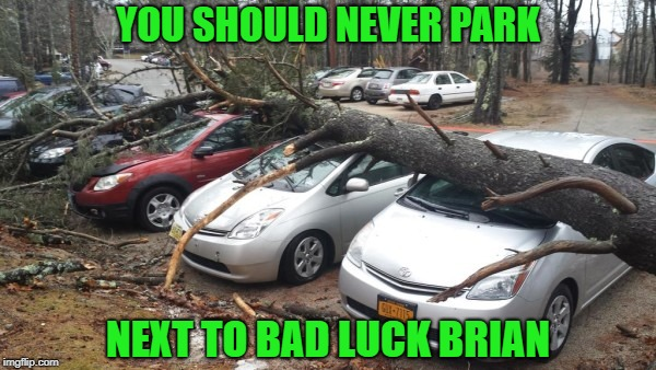 I hope those people are in good hands!!! | YOU SHOULD NEVER PARK NEXT TO BAD LUCK BRIAN | image tagged in tree crushing cars,memes,bad luck brian,funny,bad luck,are you in good hands | made w/ Imgflip meme maker