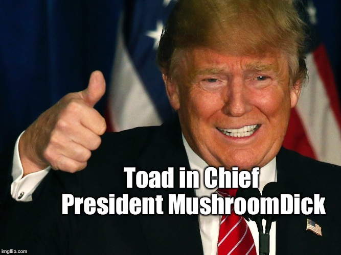 Toad in Chief President MushroomDick | image tagged in president mushroomdick | made w/ Imgflip meme maker