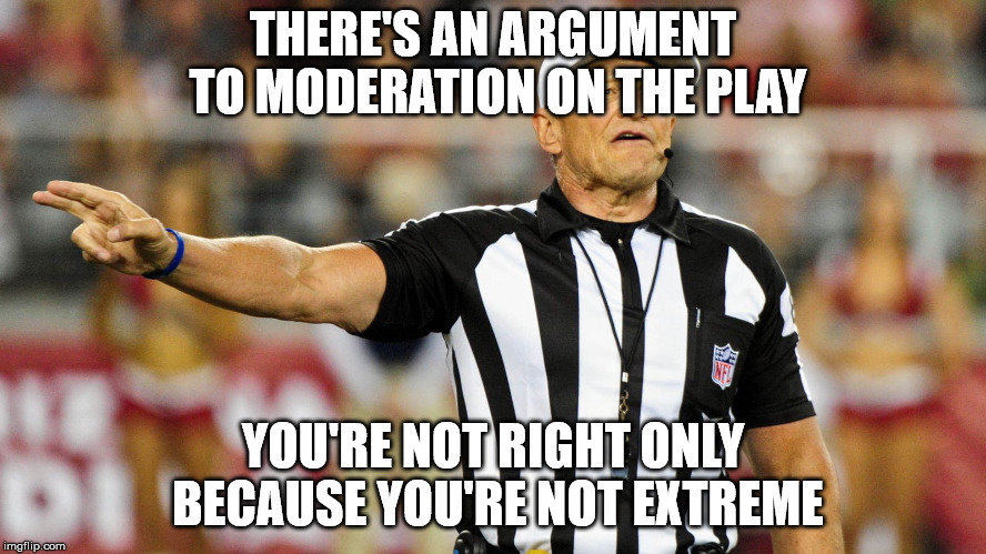 Logical Fallacy Referee |  THERE'S AN ARGUMENT TO MODERATION ON THE PLAY; YOU'RE NOT RIGHT ONLY BECAUSE YOU'RE NOT EXTREME | image tagged in logical fallacy referee | made w/ Imgflip meme maker