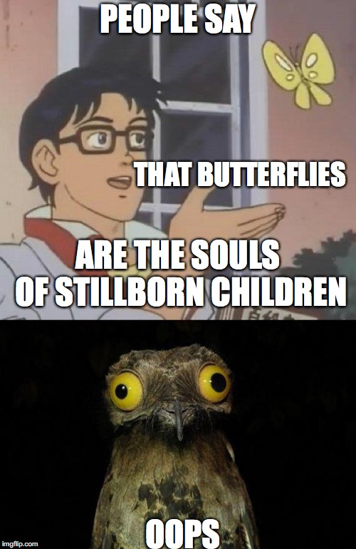 Oops |  PEOPLE SAY; THAT BUTTERFLIES; ARE THE SOULS OF STILLBORN CHILDREN; OOPS | image tagged in hoth777,darkhumor | made w/ Imgflip meme maker