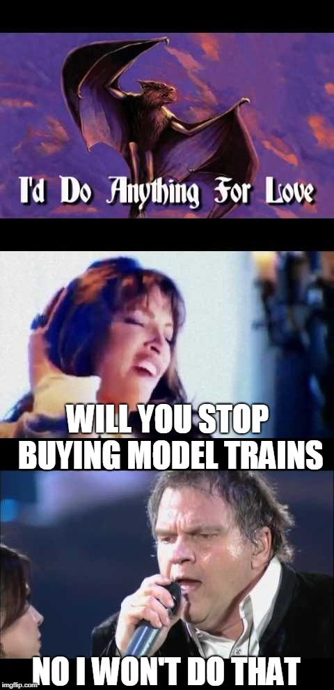 Model trains for love | NO I WON'T DO THAT WILL YOU STOP BUYING MODEL TRAINS | image tagged in i like trains | made w/ Imgflip meme maker