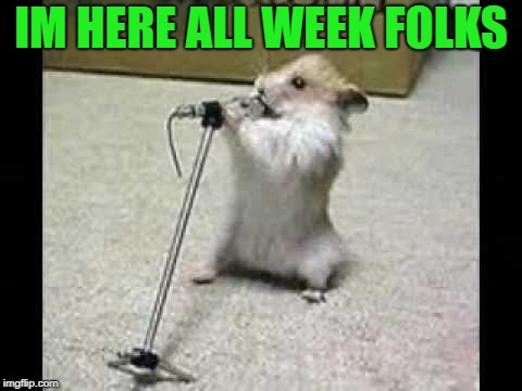 IM HERE ALL WEEK FOLKS | image tagged in hamster | made w/ Imgflip meme maker