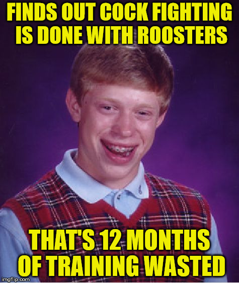 Bad Luck Brian | FINDS OUT COCK FIGHTING IS DONE WITH ROOSTERS THAT'S 12 MONTHS OF TRAINING WASTED | image tagged in memes,bad luck brian | made w/ Imgflip meme maker