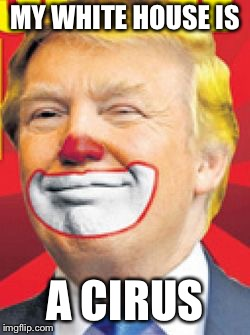 Donald Trump the Clown |  MY WHITE HOUSE IS; A CIRCUS | image tagged in donald trump the clown | made w/ Imgflip meme maker