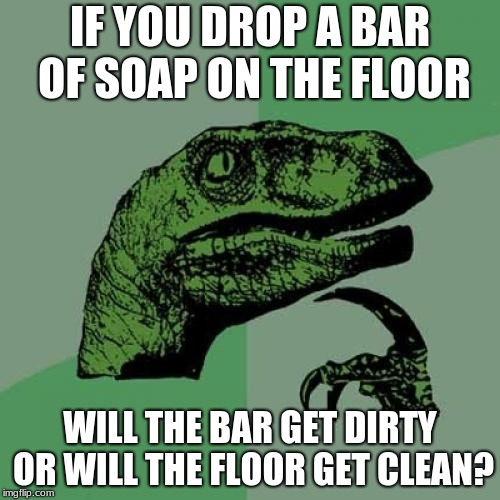 Philosoraptor | IF YOU DROP A BAR OF SOAP ON THE FLOOR WILL THE BAR GET DIRTY OR WILL THE FLOOR GET CLEAN? | image tagged in memes,philosoraptor | made w/ Imgflip meme maker