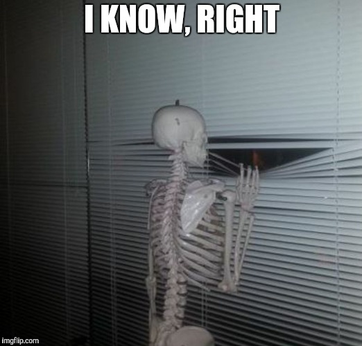 Scared skeleton | I KNOW, RIGHT | image tagged in scared skeleton | made w/ Imgflip meme maker