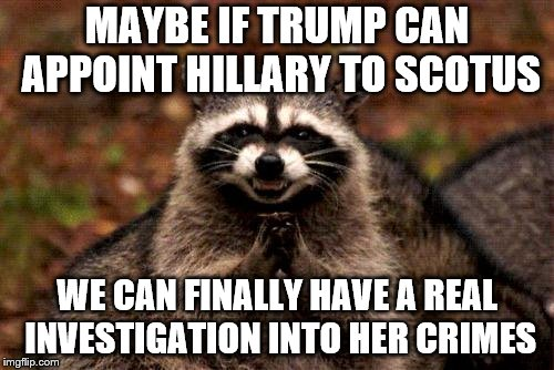 Plotting an investigation | MAYBE IF TRUMP CAN APPOINT HILLARY TO SCOTUS WE CAN FINALLY HAVE A REAL INVESTIGATION INTO HER CRIMES | image tagged in hillary,criminal,crime,trump,scotus | made w/ Imgflip meme maker