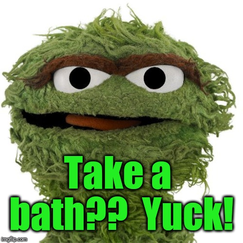 Oscar The Grouch | Take a bath??  Yuck! | image tagged in oscar the grouch | made w/ Imgflip meme maker