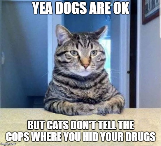 true | YEA DOGS ARE OK BUT CATS DON'T TELL THE COPS WHERE YOU HID YOUR DRUGS | image tagged in cats,dogs,drugs | made w/ Imgflip meme maker